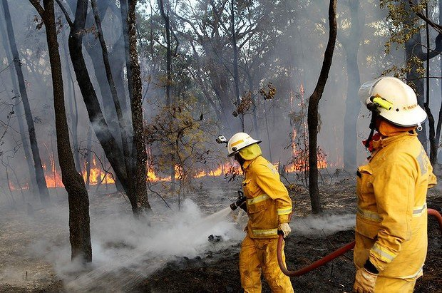 how to prepare for bushfire emergencies