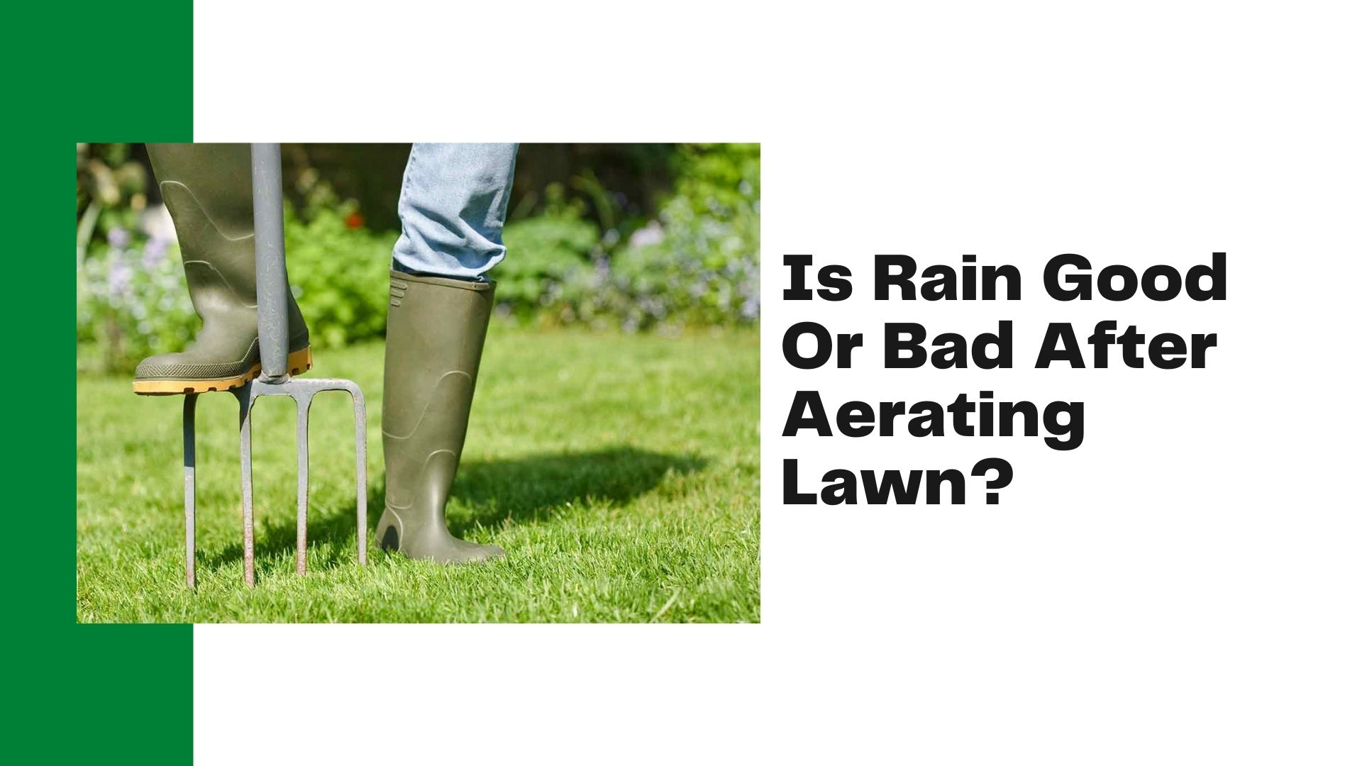 Is Rain Good Or Bad After Aerating Lawn_